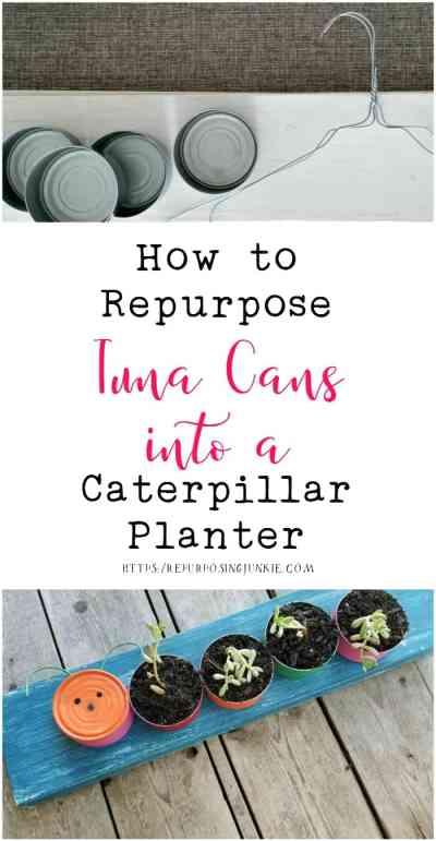 How to Repurpose Tuna Cans into Caterpillar Succulent Planter