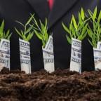 Что ищут инвесторы в стартапах