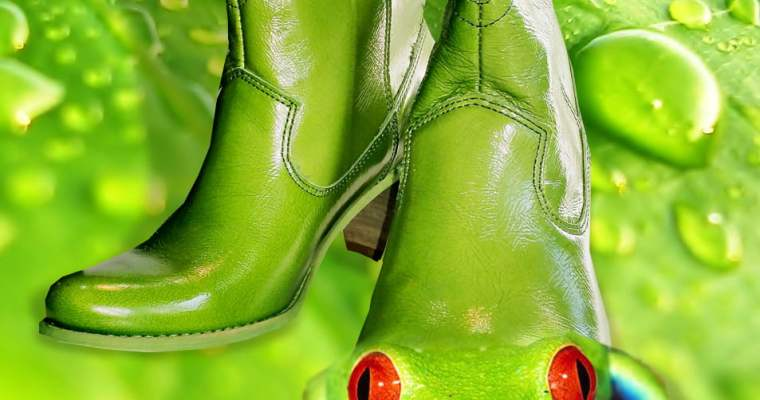 Felmini Boots That Eat Flies