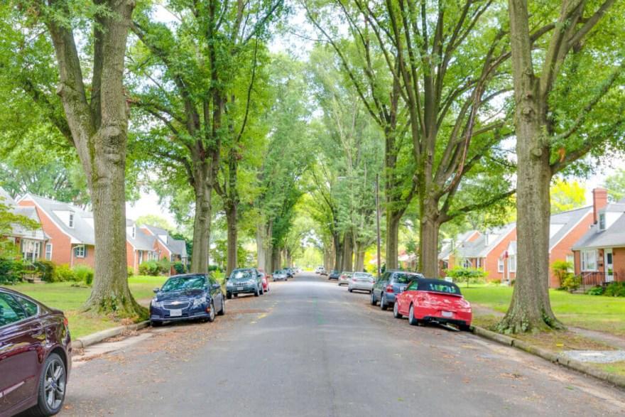 beautiful rosedale street