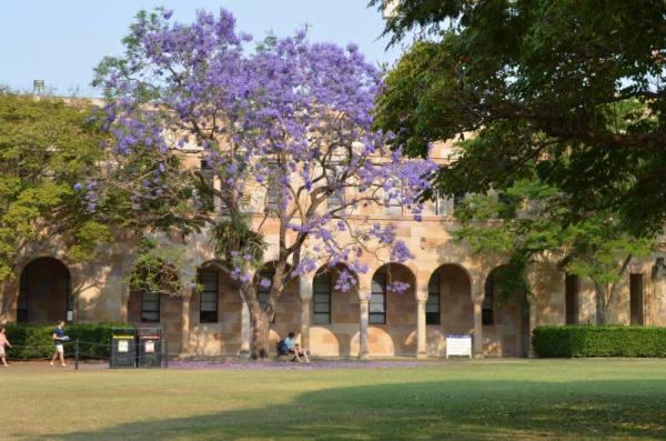The University of Queensland Brisbane Direct Enrollment