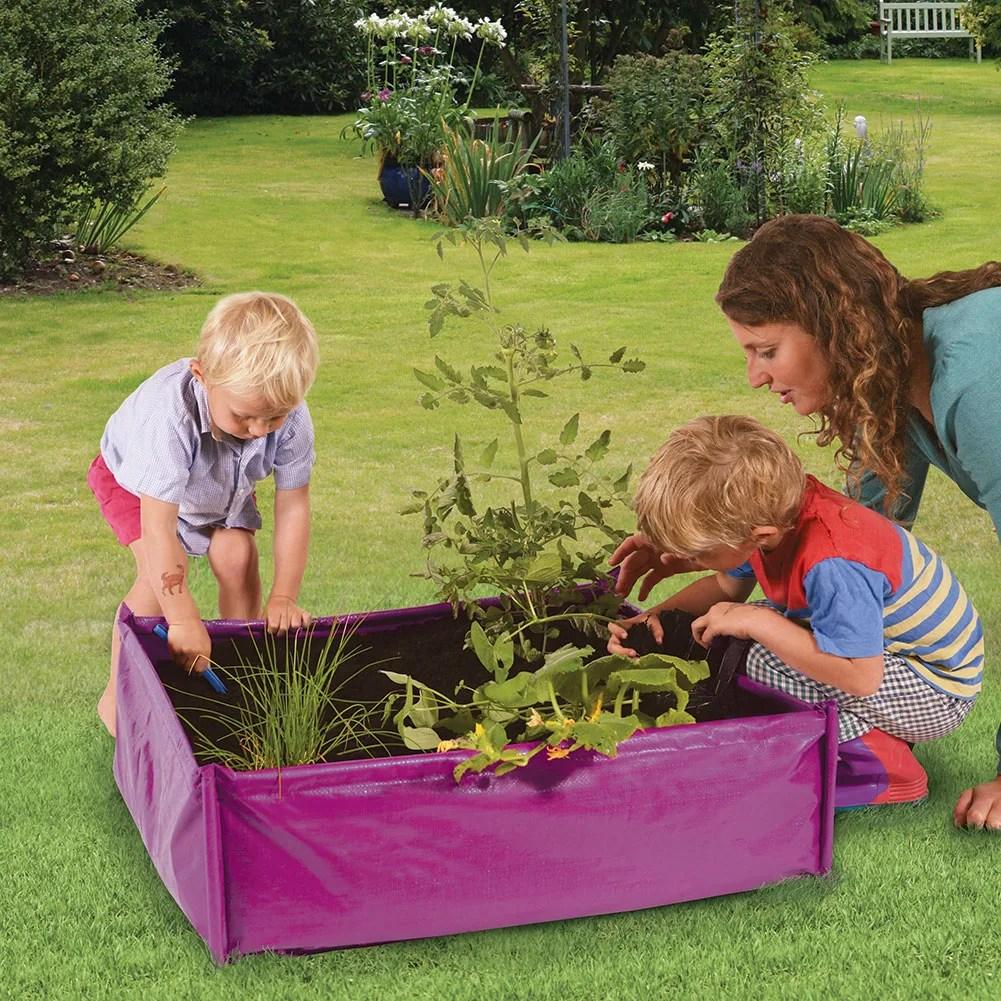 Raised Vegetable Garden Disabled