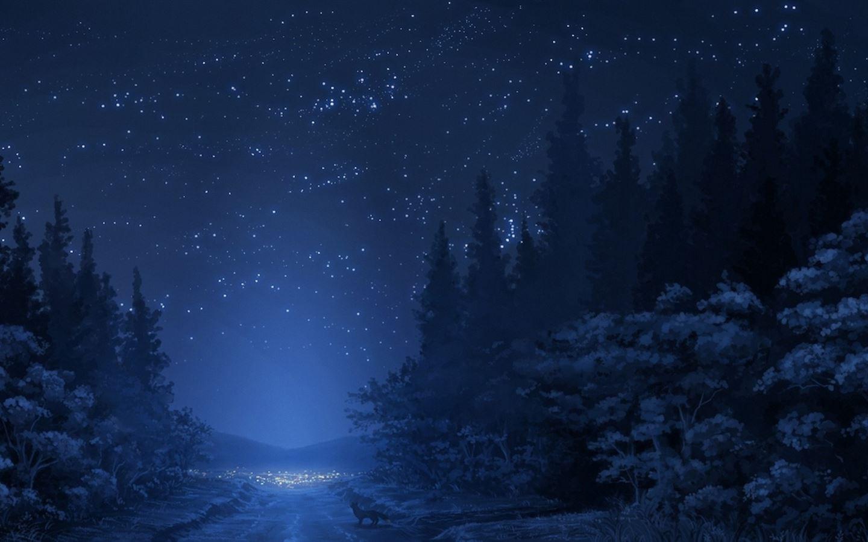 Winter Night Sky Mac Wallpaper Download