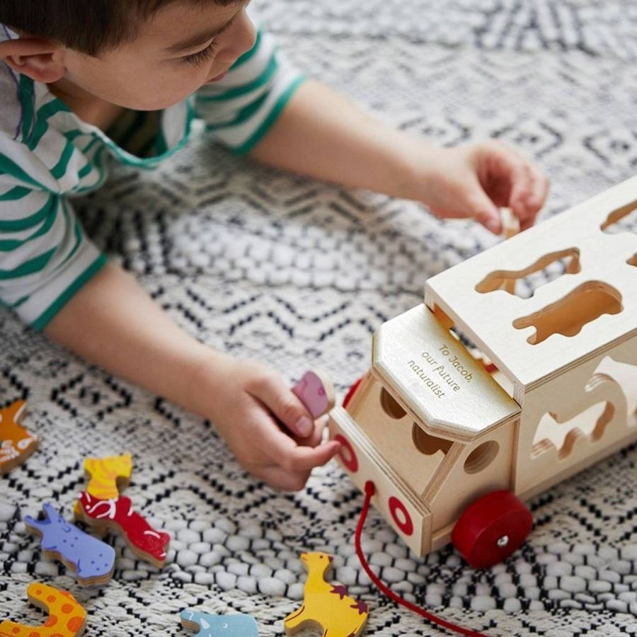 Your kiddo's screen-time adoration isn't exactly imagination-inspiring. While some tech-friendly activities are perfectly okay (and educational too!), toys that encourage pretend play and foster creativity are where it's at.
