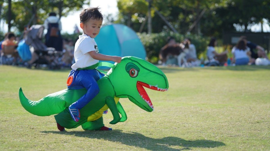 Whatever the species, dinosaurs attract the attention of children (and many adults too). In fact, it is likely that you also liked them during your childhood, or that maybe one of your friends was a big fan of dinosaurs