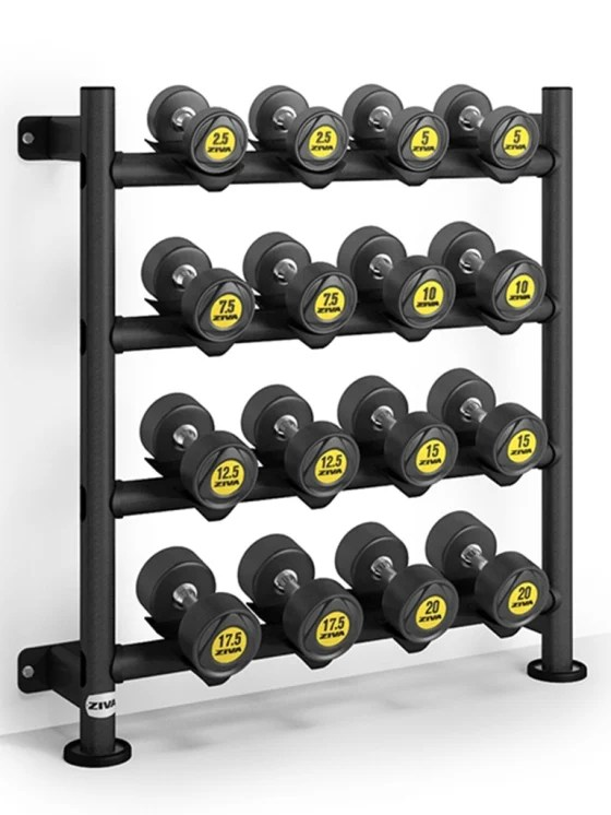 ziva sl wall mounted dumbbell rack 8 pair