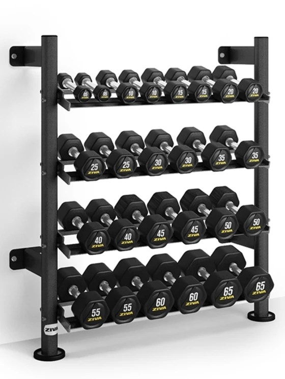 ziva sl wall mounted hexagon dumbbell rack