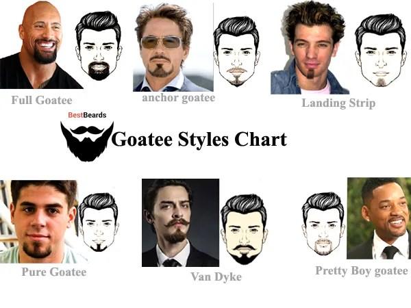 Goatee Styles Chart