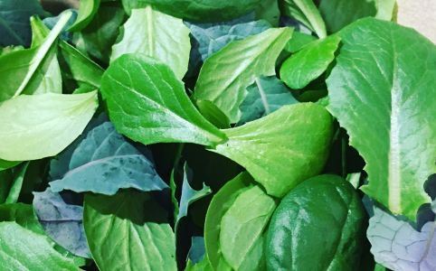 winter-saladwinter-salad