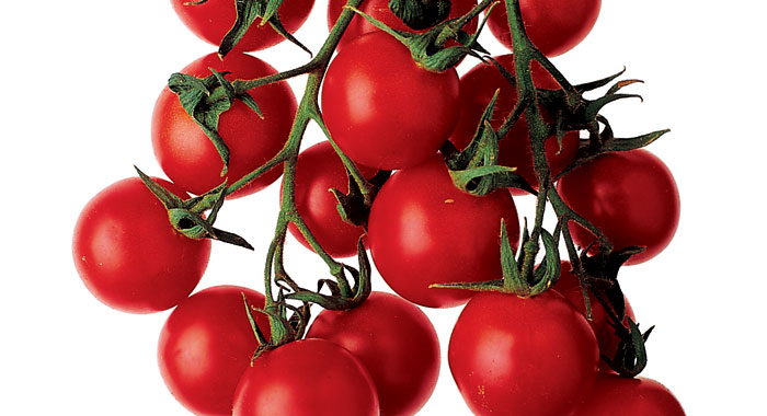 Imported tomatoes. Ban this sick filth!