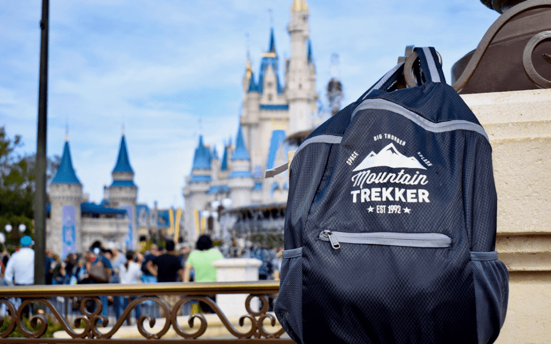 What's The Best Bag For Disney World in 2018?