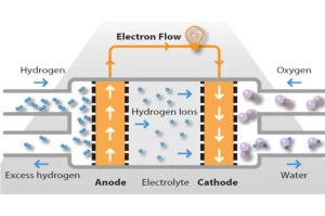 Hydrogen Fuel Cell Cars  Pros, Cons, History & How they