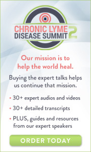 The Chronic Lyme Disease Summit 2!: FREE from HealthTalks Online 1 The Chronic Lyme Disease Summit 2!: FREE from HealthTalks Online