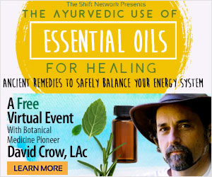 David Crow's Ayurvedic Secrets FREE from the ShiftNetwork 4 David Crow's Ayurvedic Secrets FREE from the ShiftNetwork