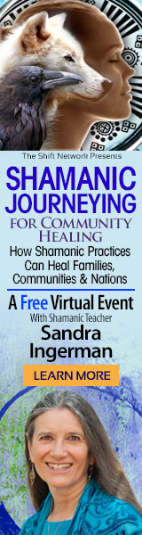 Discover shamanic journeying for healing our world with Sandra Ingerman: from the ShiftNetwork 4 Discover shamanic journeying for healing our world with Sandra Ingerman: from the ShiftNetwork