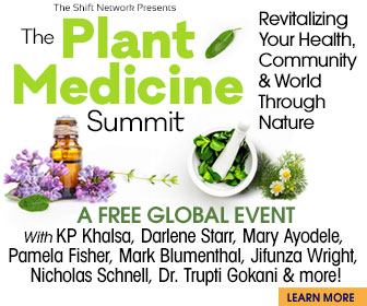 The Plant Medicine Summit 2019: FREE from the Shift Network 1 The Plant Medicine Summit 2019: FREE from the Shift Network