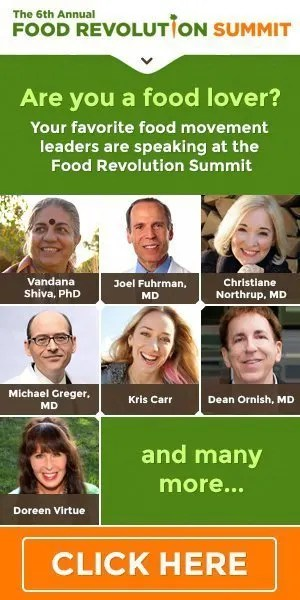 The 6th Annual Food Revolution Summit, April 29 - May 7