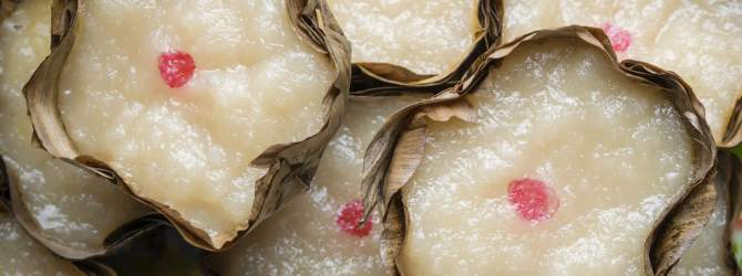 Chinese new year dessert (nian gao)