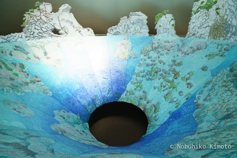 花寿波島の秘密