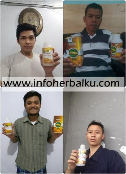 Review Dan Harga Qnc Jelly Gamat Di Apotik