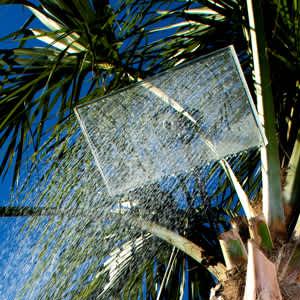 Clear Showerhead