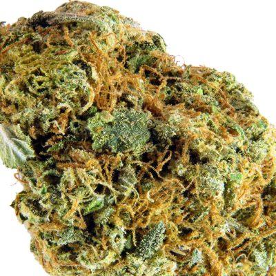 Pink Bubba Marijuana Strain