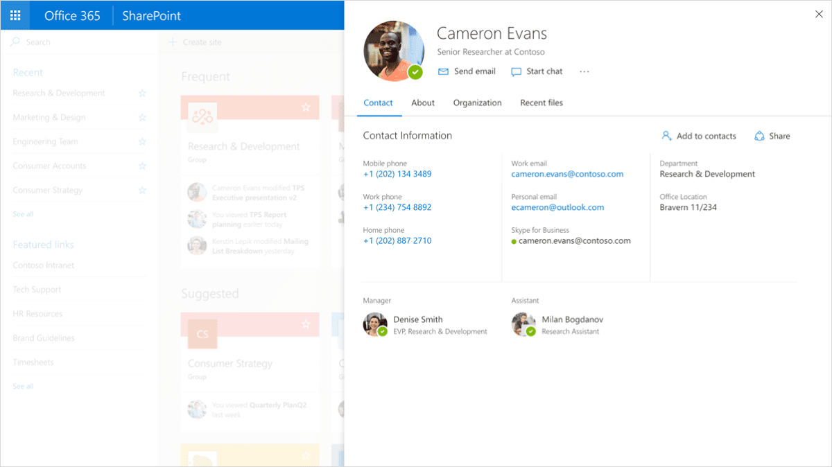 Office 365 Hovering Profile Card