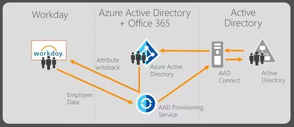 Azure Active Directory's user provisioning service from Workday to Azure AD