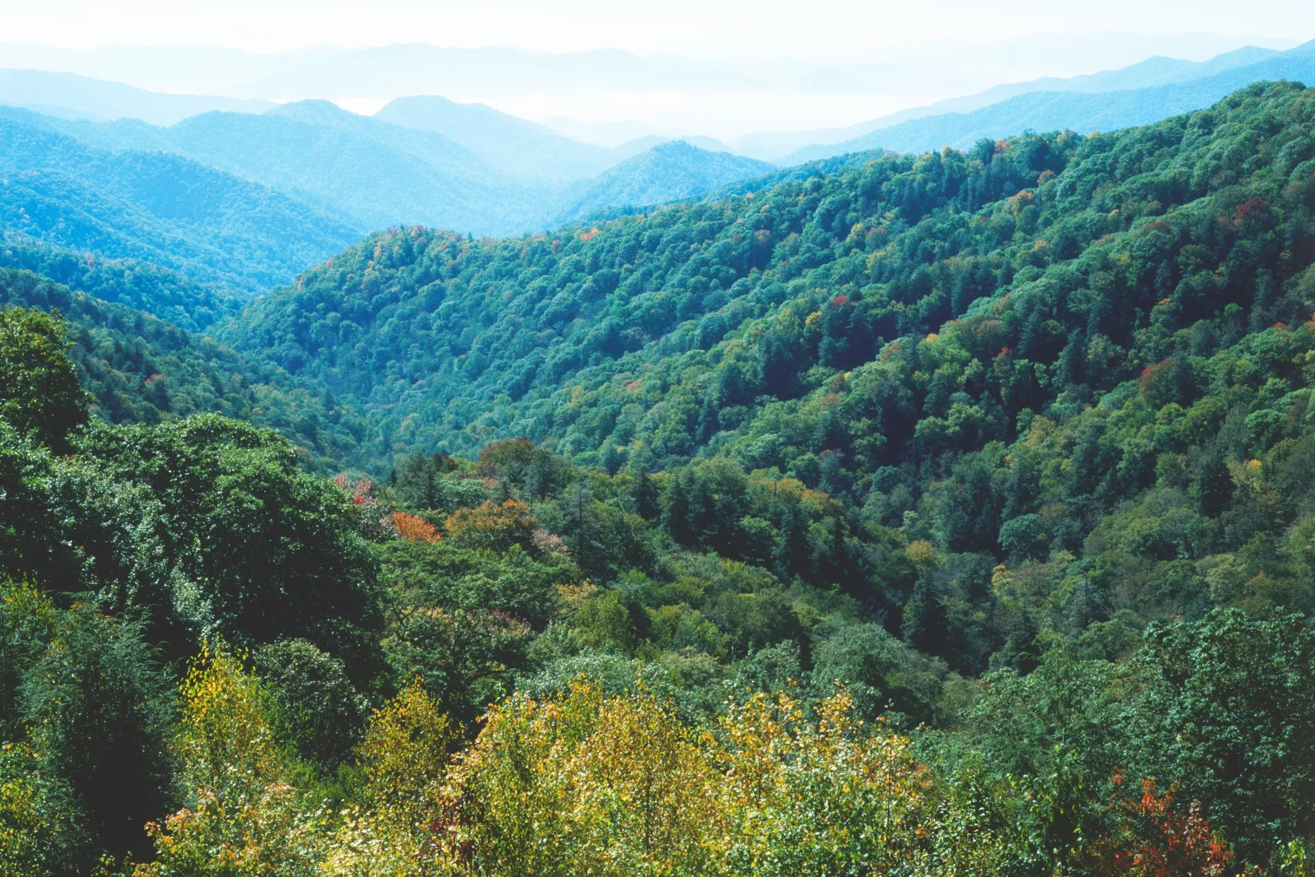 Appalachian Mountain Facts For Kids