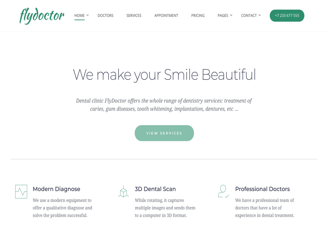 FlyDoctor WordPress Theme