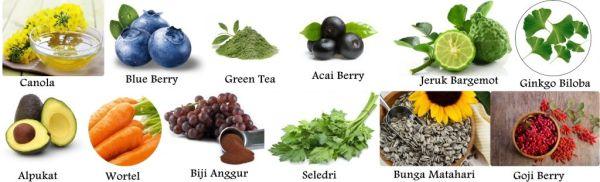 Obat Herbal Mata Menonjol Di Apotik