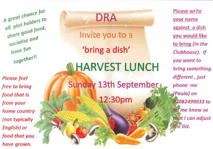 harvest_lunch