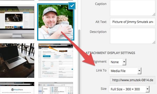 Image of the default insert media settings.
