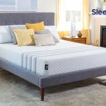 Top 10 Best Mattresses For Back Pain Sleepare