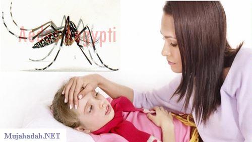 Penyakit Chikungunya – Penyebab, Gejala, dan Bahayanya