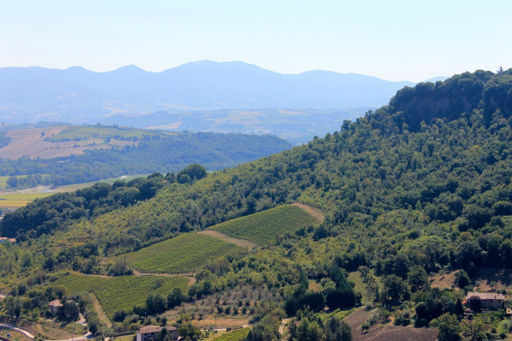 Umbrian countryside