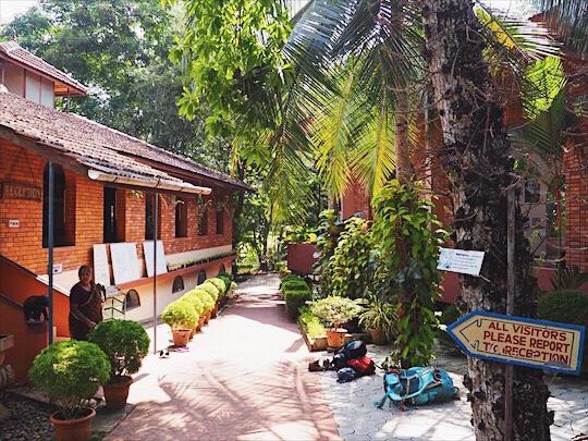 Yoga ashram in India