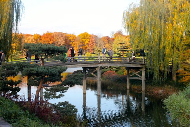 Chicago Botanic08