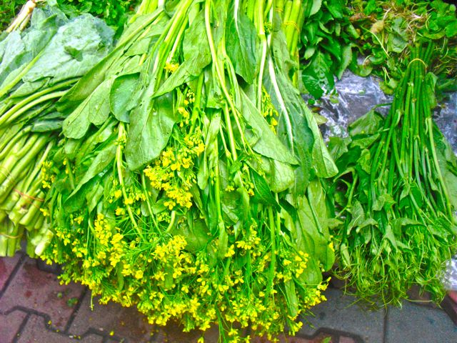 Fresh herbs at a market in Chiang Mai, Thailand