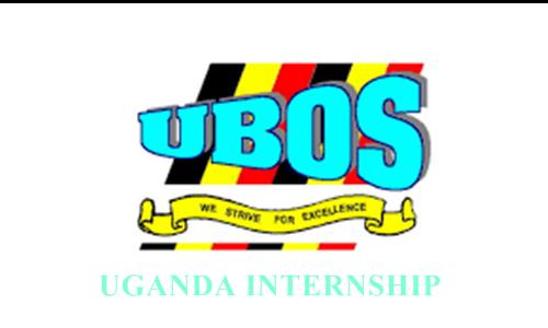 UBOS internship