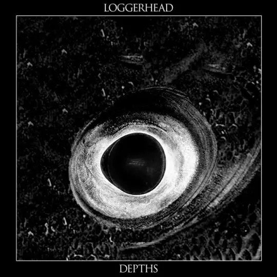 Loggerhead - Depths
