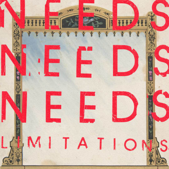 NEEDS - Limitations