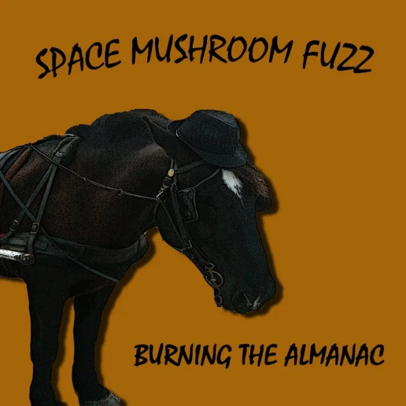 SpaceMushroomFuzz