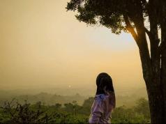 Bukit Wangun: Wisata Alam Bogor