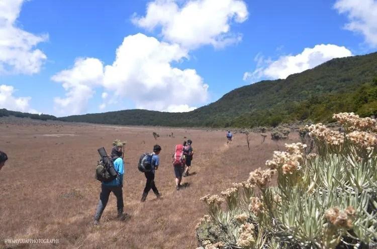 Gunung Gede Suryakencana