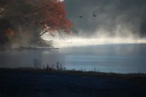 misty morning on lake glenville nc