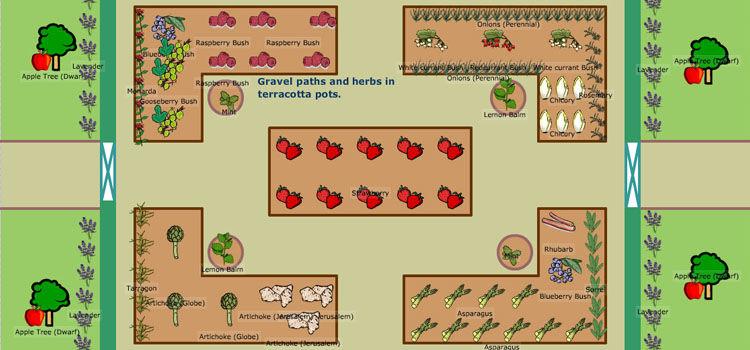 perennial garden plan