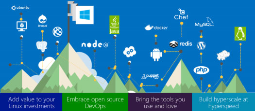 Microsoft Support for Open Systems