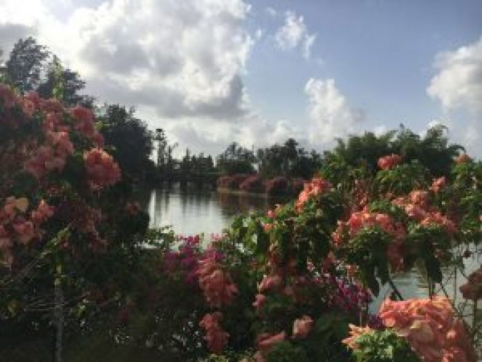 Day Trip : Silvassa