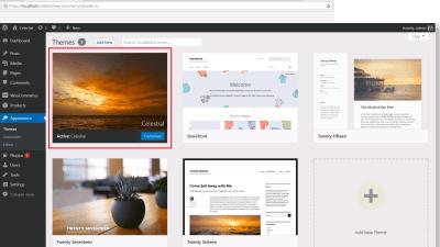 WordPress theme selector